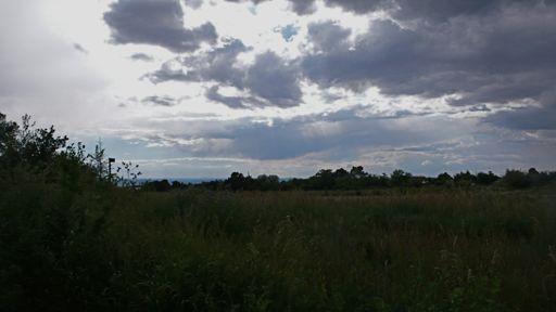 Taos4